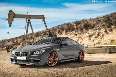 2015 BMW 6 Series Gran Coupe | 2015 BMW 640i Fitted With 20 Inch BD-8's in Rose Gold