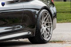 Black 3 Series - Rear Spokes
