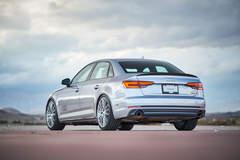 H&R 2017 Audi A4 - Carbon Fiber Rear Spoiler