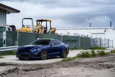 Blue Mustang GT on Velgen Wheels  VMB9 Satin Bronze  20x9 & 20x10.5