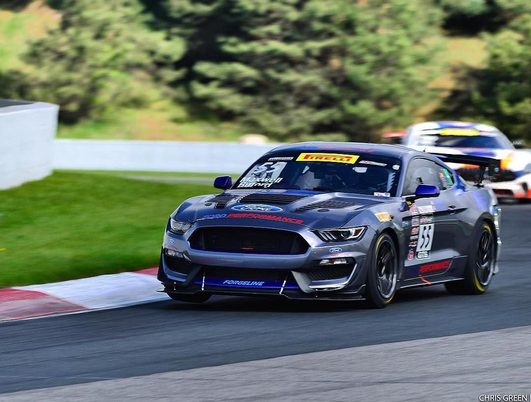 2018 Ford Mustang | Aschenbach Dominates Pirelli World Challenge GTS at Canadian Tire Motorsports Park on Forgeline One Piece Forged Monoblock GS1R Wheels!