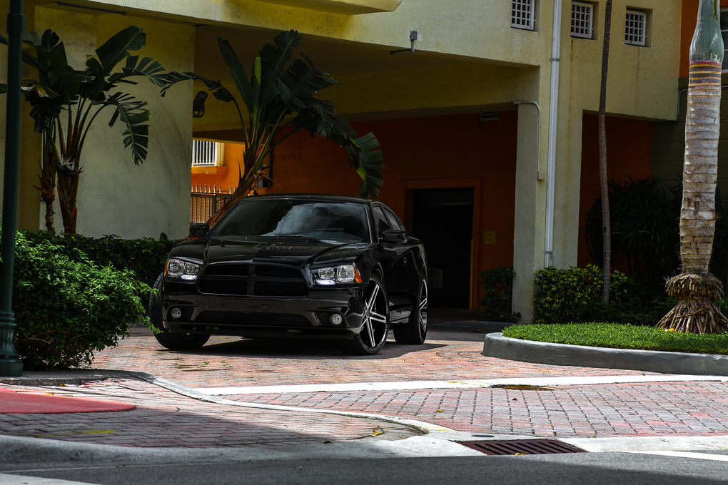 2011 Dodge Charger | Dodge Charger on Ruff R359's