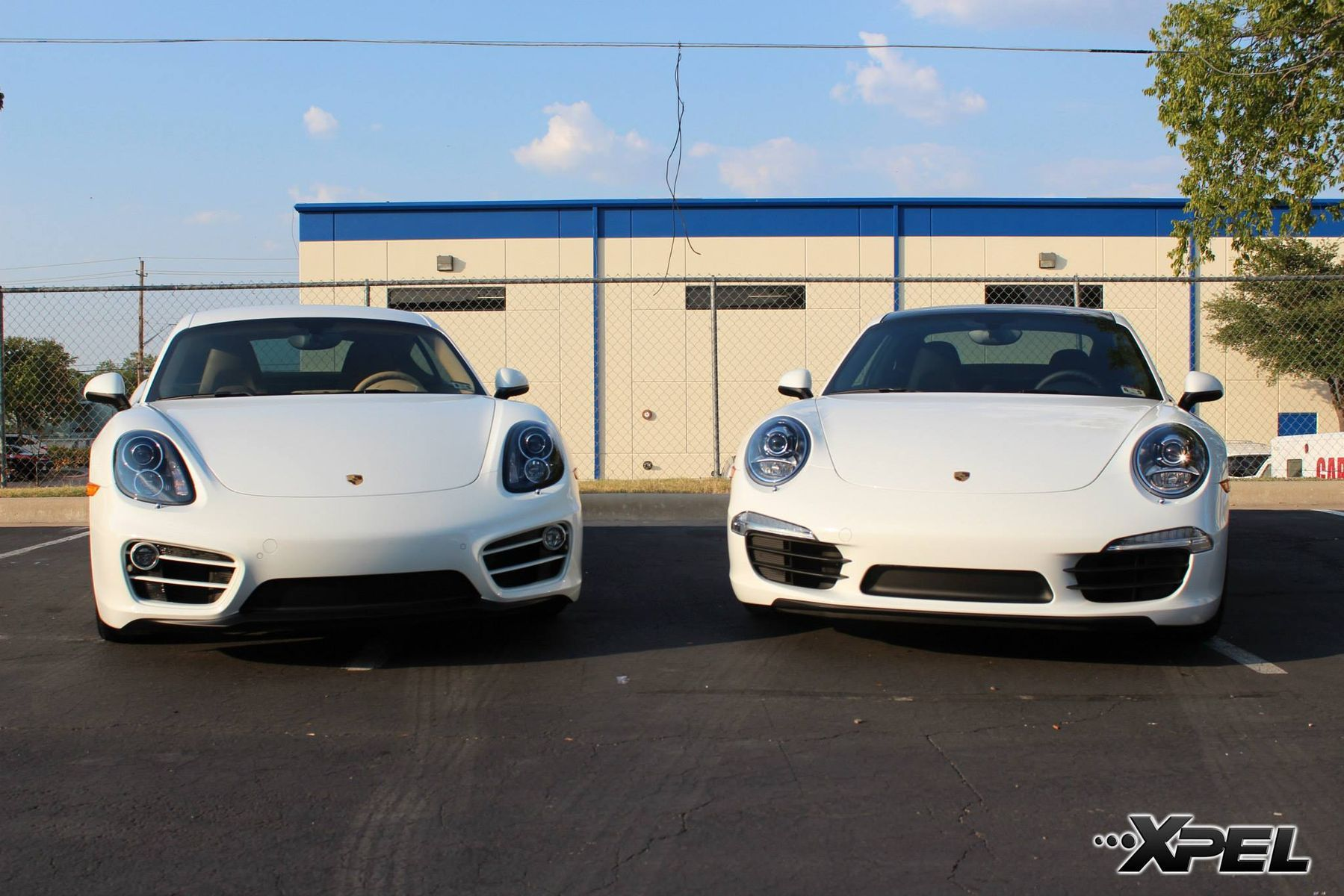 Porsche  | Which would drive? 2 Beautiful Porsche with XPEL ULTIMATE paint protection film