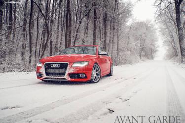 Audi B8 S4