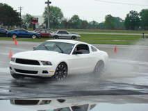 Mustang at Winged Warrior