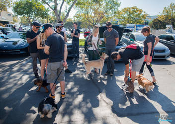 San Diego Cars & Coffee August 13th, 2016