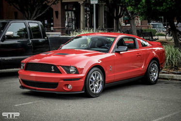 2007 Ford Shelby GT500 | 2007 Ford Shelby GT500 Mustang