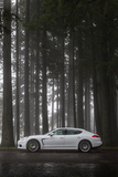 '14 Porsche Panamera