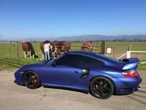 Matte Blue Porsche