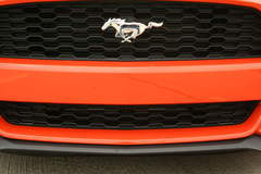 2015 Mustang EcoBoost - License Plate Hole Cheap Fix