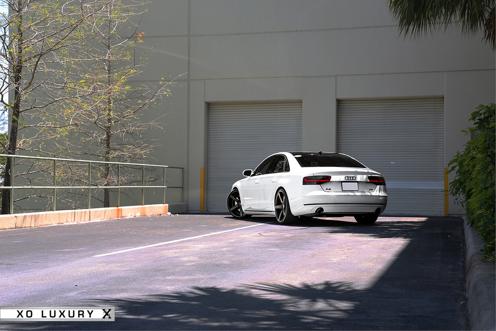 2012 Audi A6 | '12 Audi A8 on XO Miami's