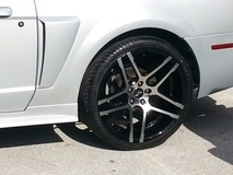 Mustang on Ruff R954's