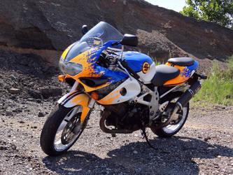 1997 Suzuki TL1000SK | GA Suzuki TL1000s 1