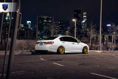 Honda Accord - Stance