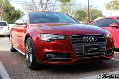 2013 Volcano Red Audi S5 protected with XPEL Ultimate Self-Healing Film