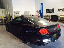 2015 Ford Mustang Fastback by Dragg
