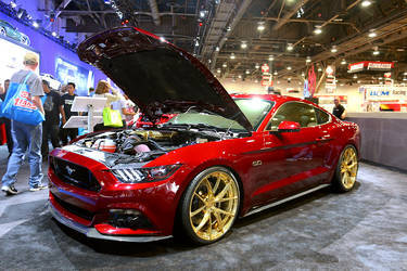 2015 Ford Mustang | 2015 Mustang  by Mad Industries