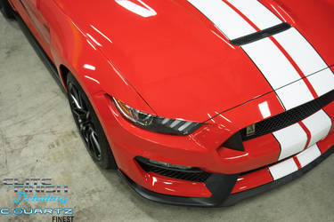 2016 Ford GT350 | 2016 Shelby GT350
