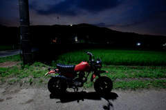 Shimobro's Honda R&P CY50