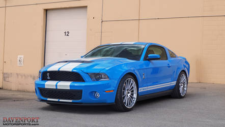 2011 Ford Shelby GT500 | Shleby GT500